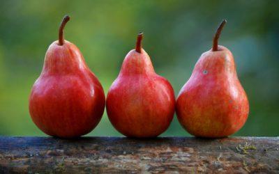 Dieta w hemodializie